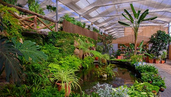 Centro de Jardinagem